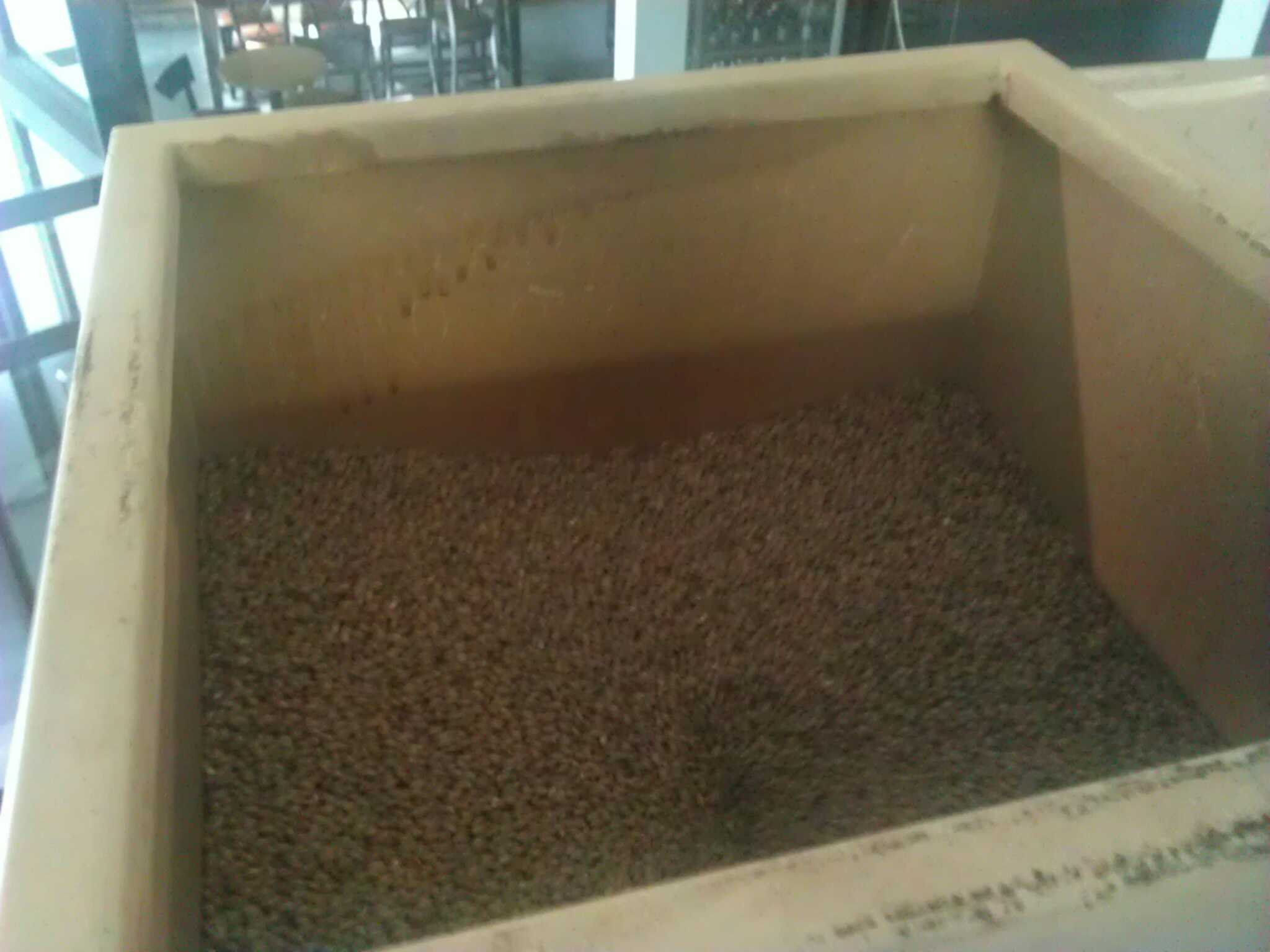 Freshly milled grain is one of those healthy smells that I think we're all sort of programmed to recognize.